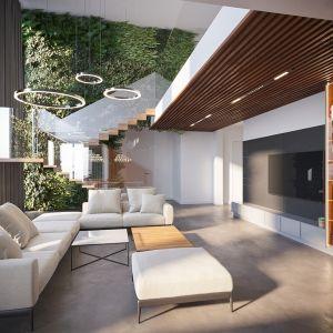 Редко когда комната фокусируется на потолке, как здесь.  Он сделан из деревянных реек со светодиодной лампой, которая дает хороший свет для просмотра телевизора, но также служит украшением.
