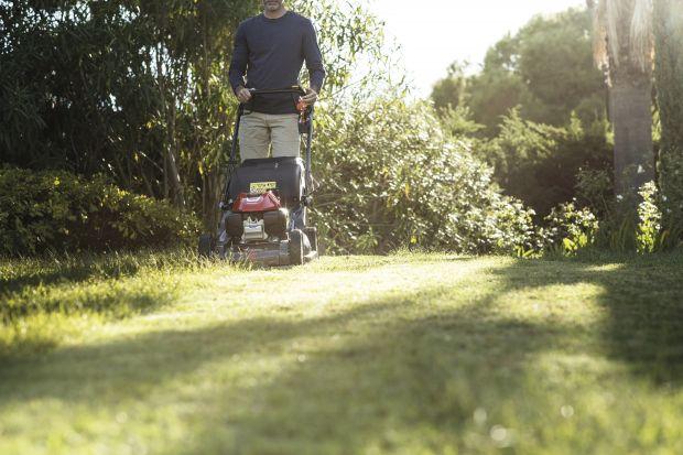 Początek jesieni to dobry moment, aby zadbać o trawę, aby jak najlepiej przygotować ją do zimy i kolejnej wiosny. Po lecie niektóre trawniki mogą bowiem borykać się z mchem i chwastami czy z niedoborem substancji odżywczych. Poza koszeniem warto