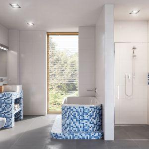 Łazienka należy do pomieszczeń o najwyższym stopniu wilgotności, dlatego tak ważne jest odpowiednie przygotowanie ścian oraz prawidłowe wykonanie tzw. suchej zabudowy.Fot. Ultramet