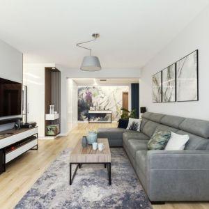 Ściana za telewizorem w salonie wykończona jest białą farbą. Projekt: Justyna Mojżyk, poliFORMA. Fot. Monika Filipiuk-Obałek