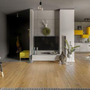 Ściana za telewizorem w salonie wykończona jest betonowymi płytami. Projekt: Maja i Marek Kostykiewicz, alekosmos.com. Fot. Aleksandra Dermont