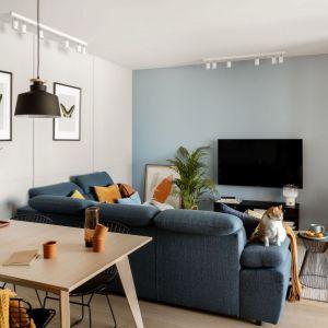 Ściana za telewizorem w salonie pomalowano na pastelowy, niebieski kolor. Projekt: Framuga Studio. Fot. Aleksandra Dermont