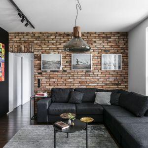 Kolor dywanu idealnie pasuje do ciemnej sofy w salonie. Projekt: pracownia Magma. Fot. Fotomohito