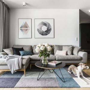 Kolorowy dywan w jasnym salonie. Projekt: Raca Architekci. Fot. Fotomohito