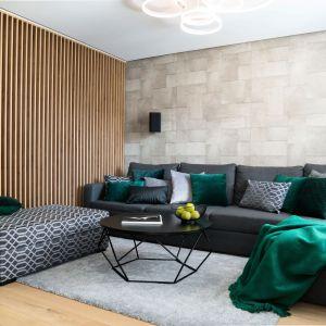 Drewniane lamele oddzielają salon od holu. Projekt: Dariusz Grabowski, Dagar Studio. Fot. Karolina Wargocka-Kusz