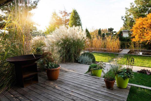 Jak przygotować drewniany taras do zimy? Jak zadbać o taras, by w znakomitej formie zaprezentował się także w kolejnym sezonie? Podpowiadamy.<br /><br /><br />